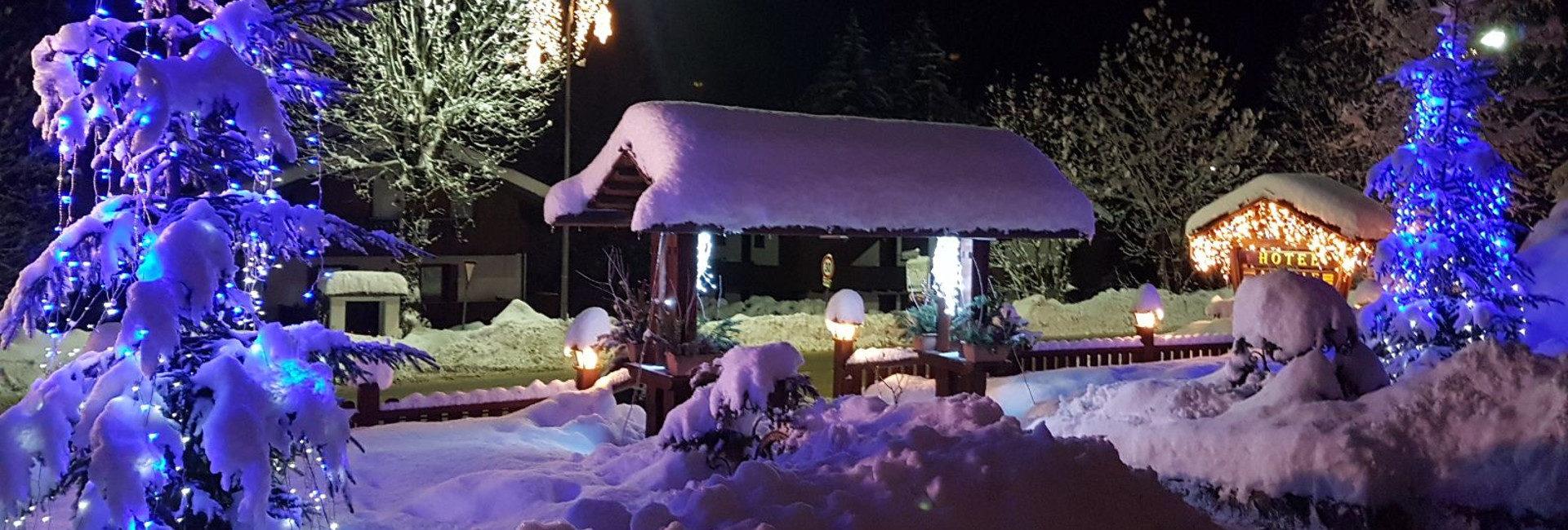 Ingresso con neve - alsoleauronzo.net
